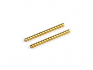 Roche - P12 2mm Upper Hinge Pin, Titanium Coated, 2 pcs (330106)