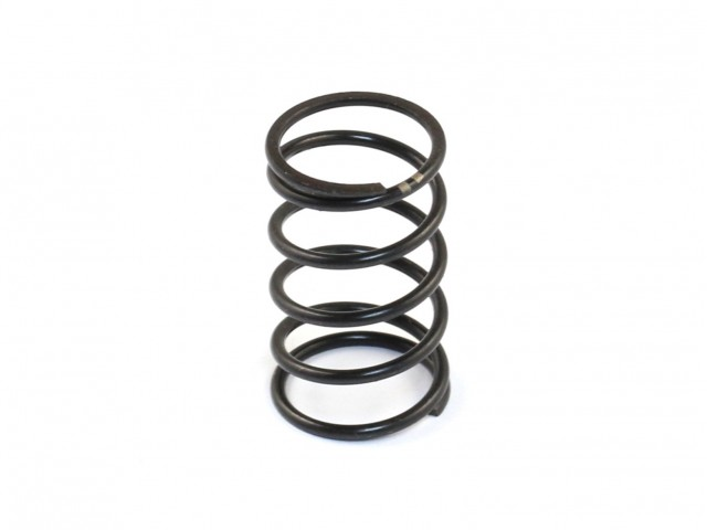 Roche - DVS-W Center Damper Spring (Medium) (330127)
