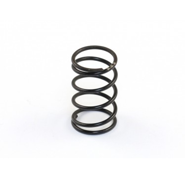 Roche - DVS-W Center Damper Spring (Hard) (330128)